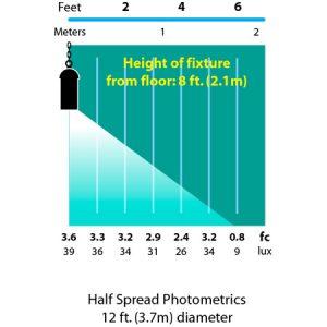 Hanging-Cylinder-Light-Specialty-Landscape-Light-photometrics