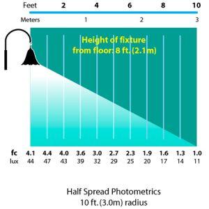 Hanging-Tulip-Wall-Mount-photometrics