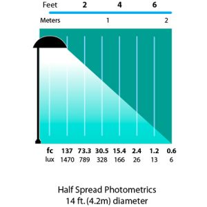 Mushroom-Hat-8-Path-Landscape-Light-photometrics