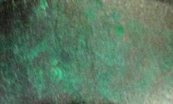 antique-verde